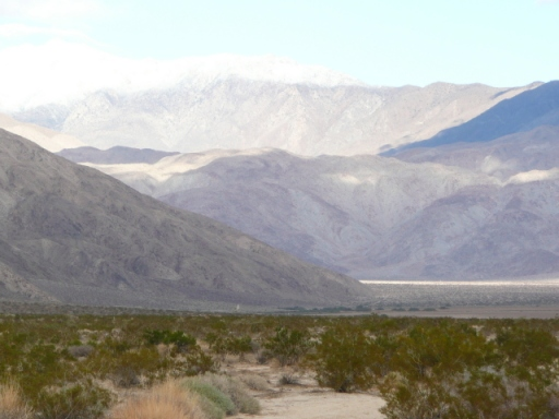 Snow on the mountain seen from Clark Dry Lake dispersed camping area