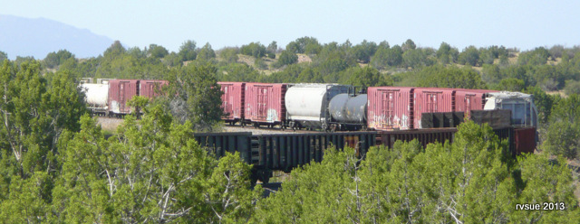 I grew up next to railroad tracks.  I still love the sound and sight of trains.